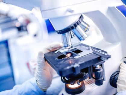 Исследование на TORCH-инфекции